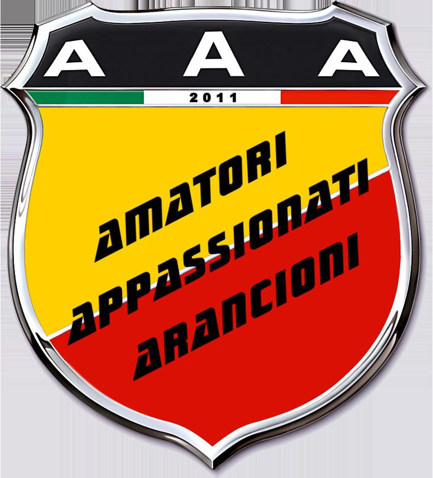 2011 AAA2011